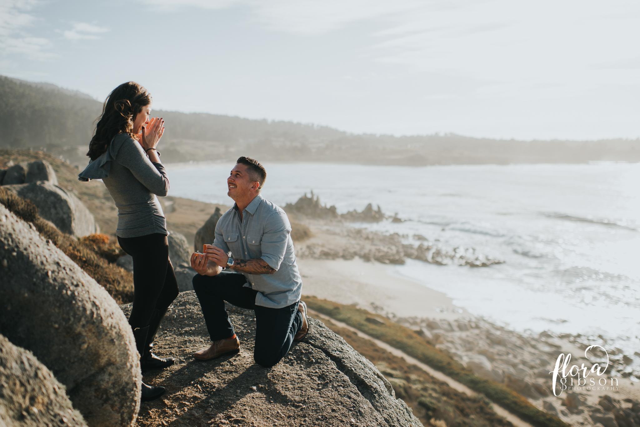 Big sur California Coast proposal