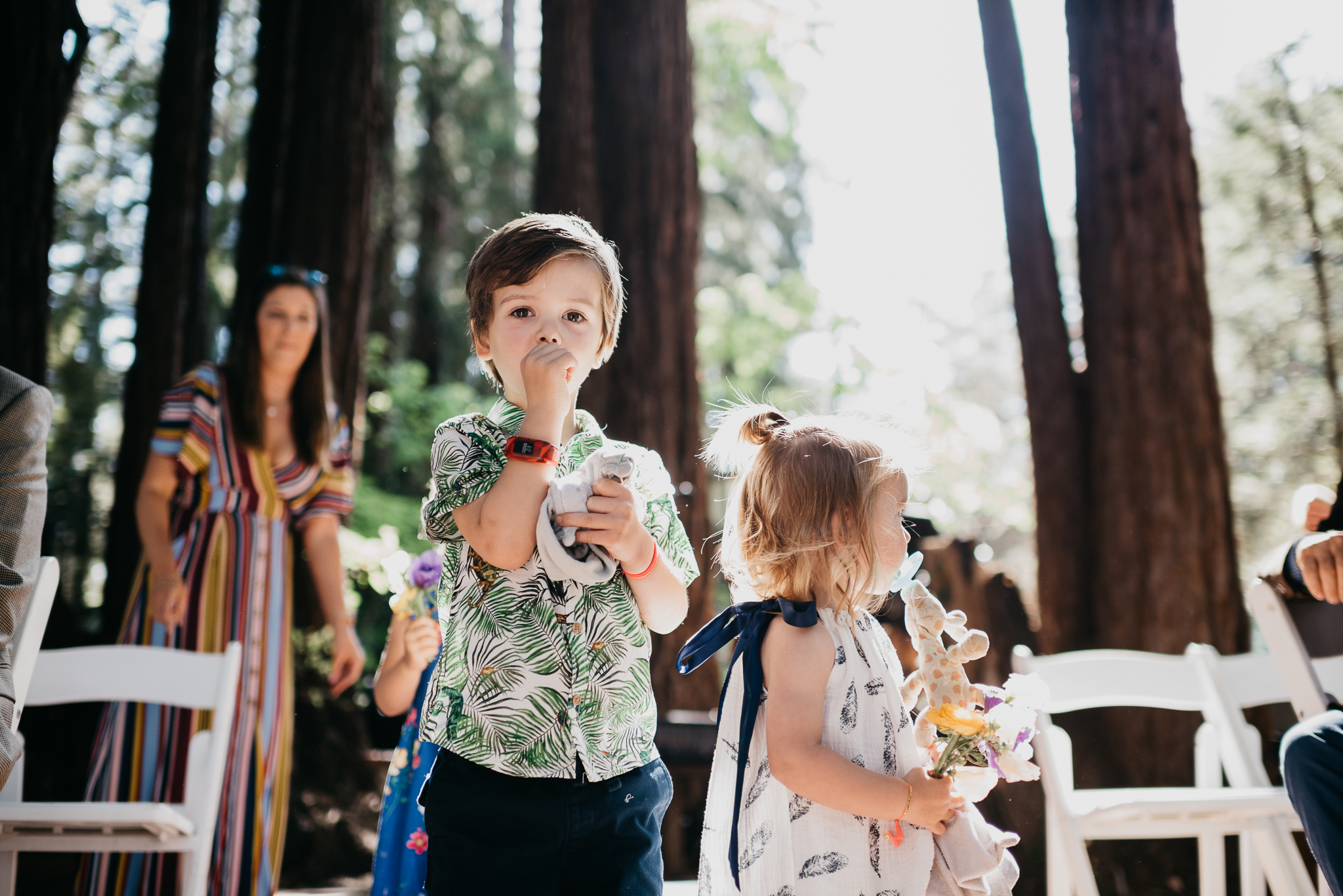 santa cruz mountains wedding
