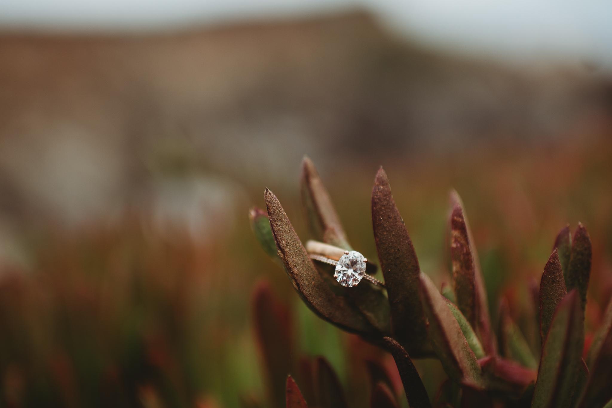 the best big sur elopement photographers
