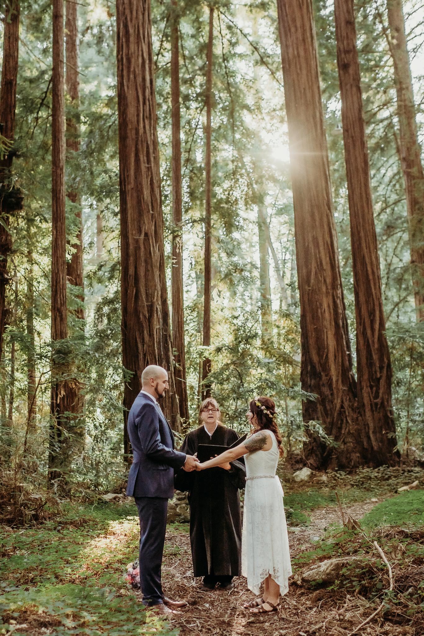 Big sur forest wedding