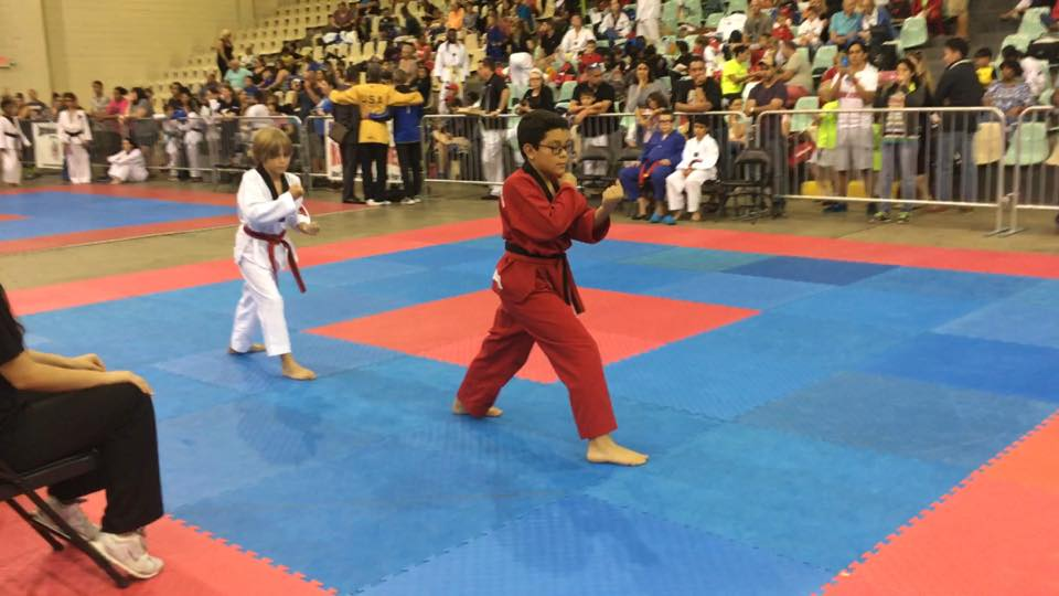 Martial Arts Form Competition