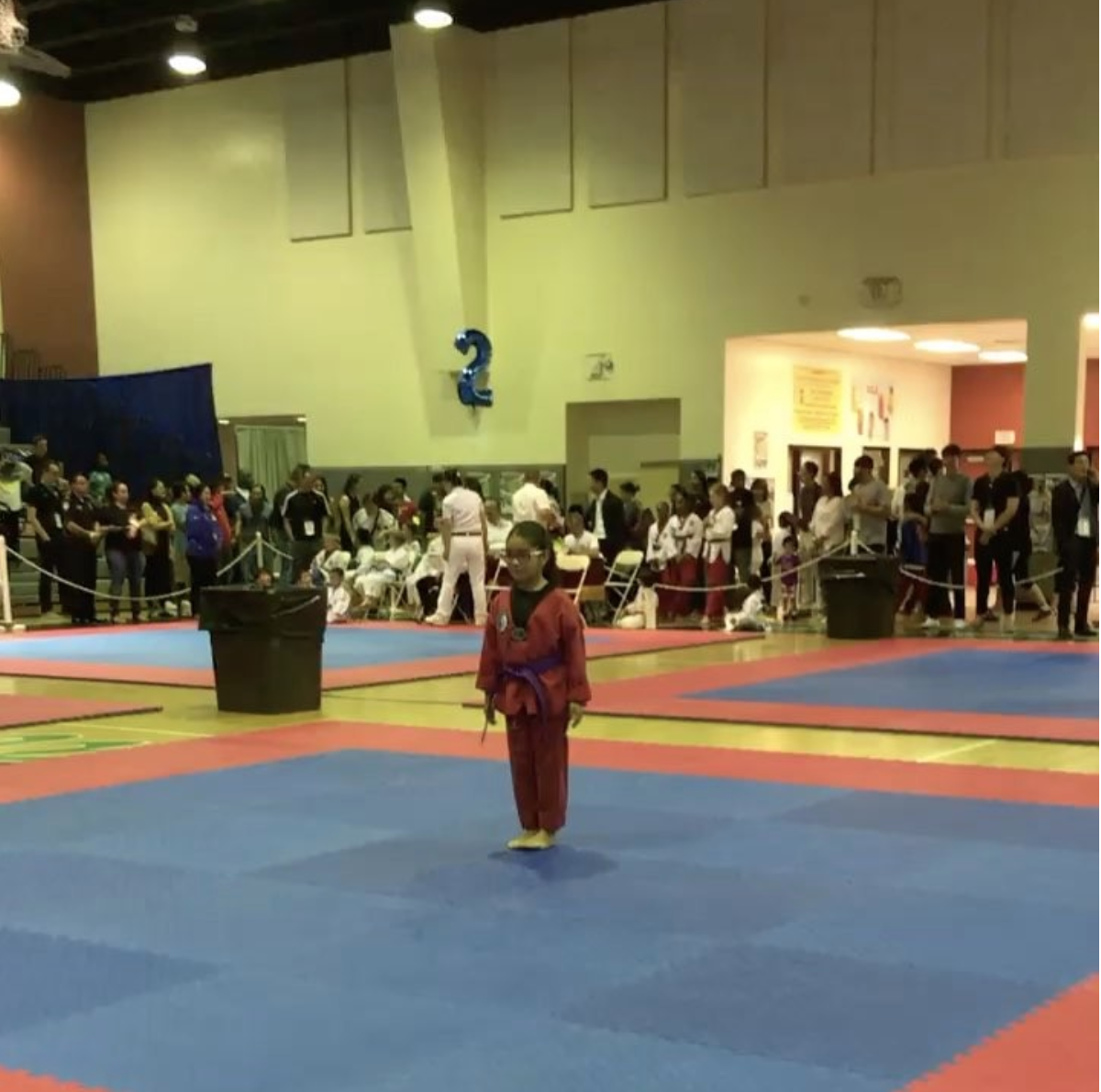 Martial Arts Competition 2017