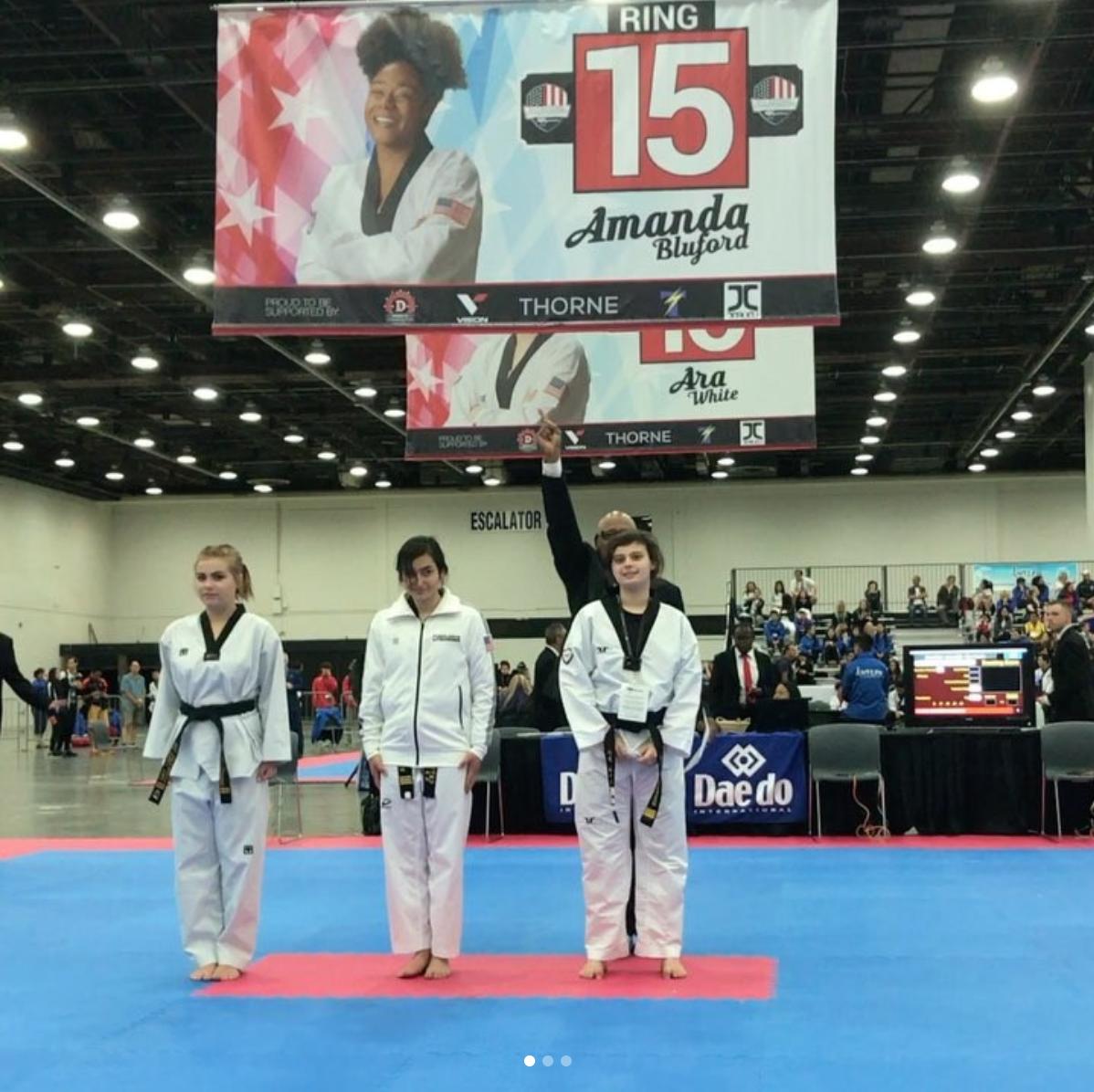National Martial Arts Taekwondo Championship