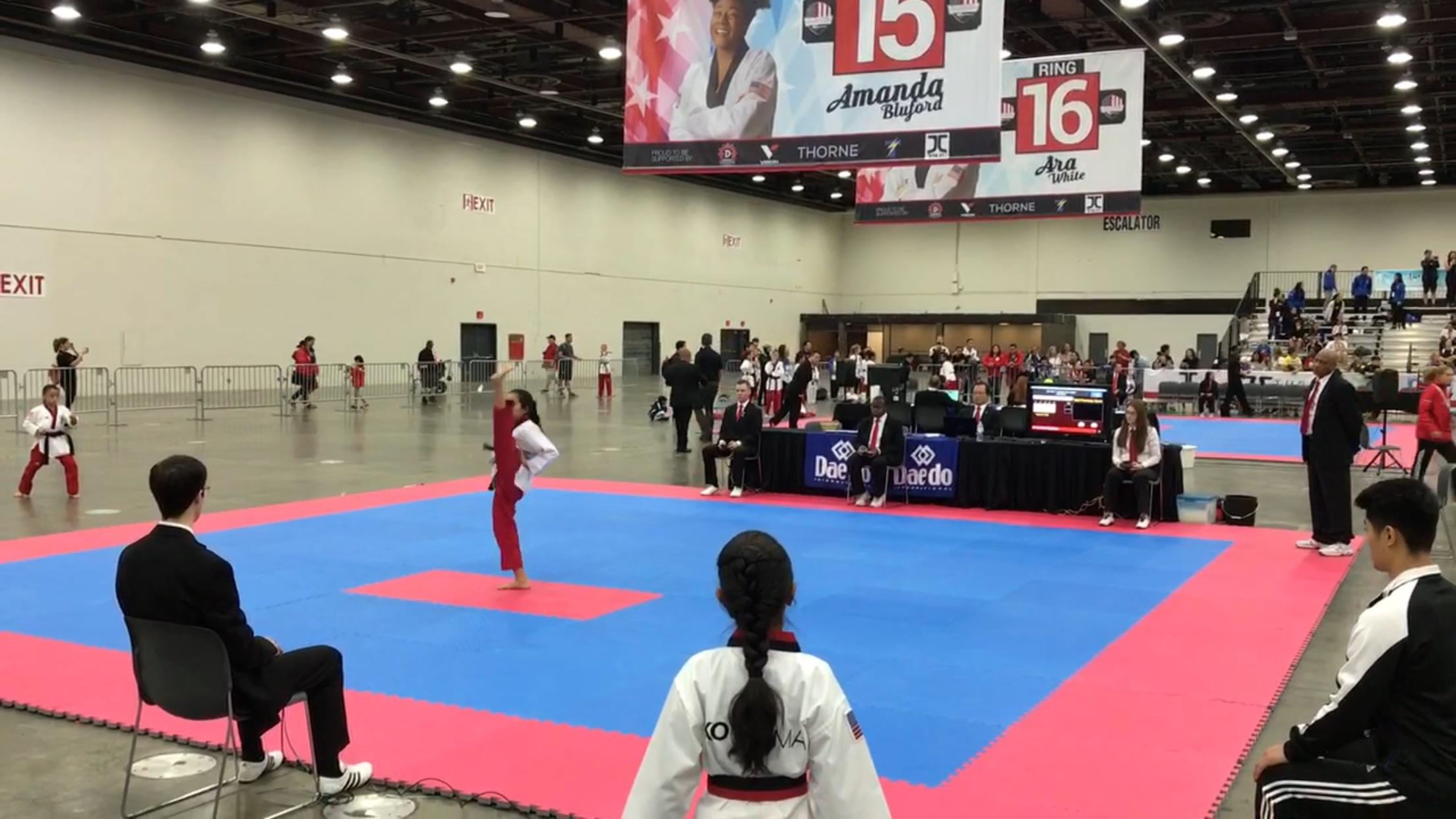National Taekwondo Competition Detroit 2017