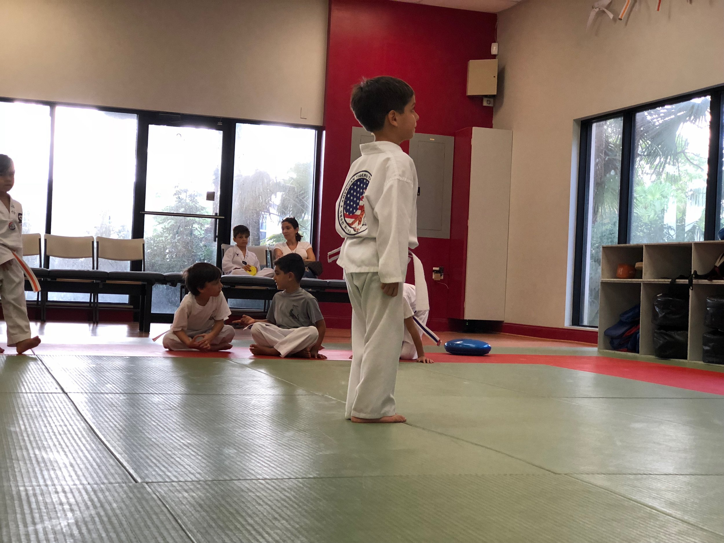 Kids Taekwondo Class Weston