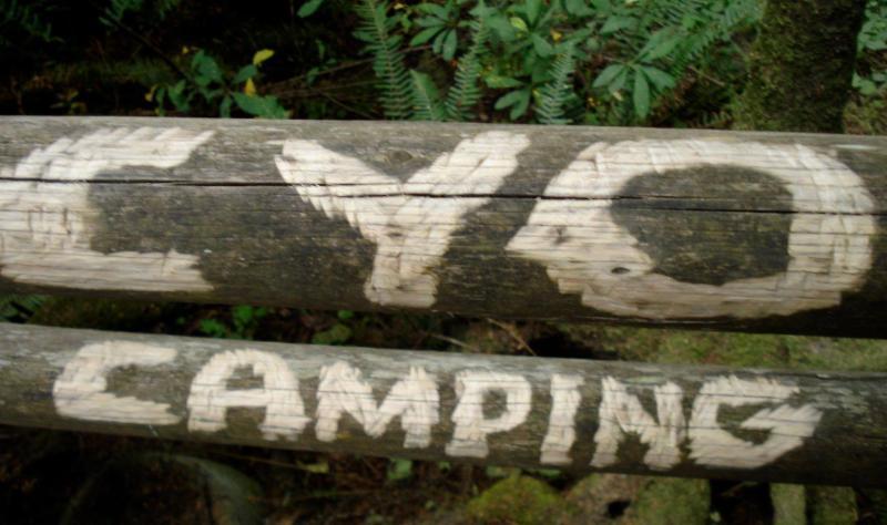 cyo camping.jpg