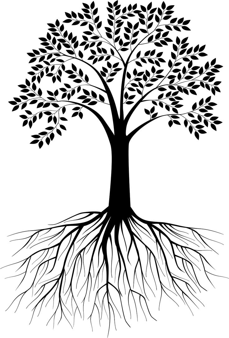 Our True Self is within our roots