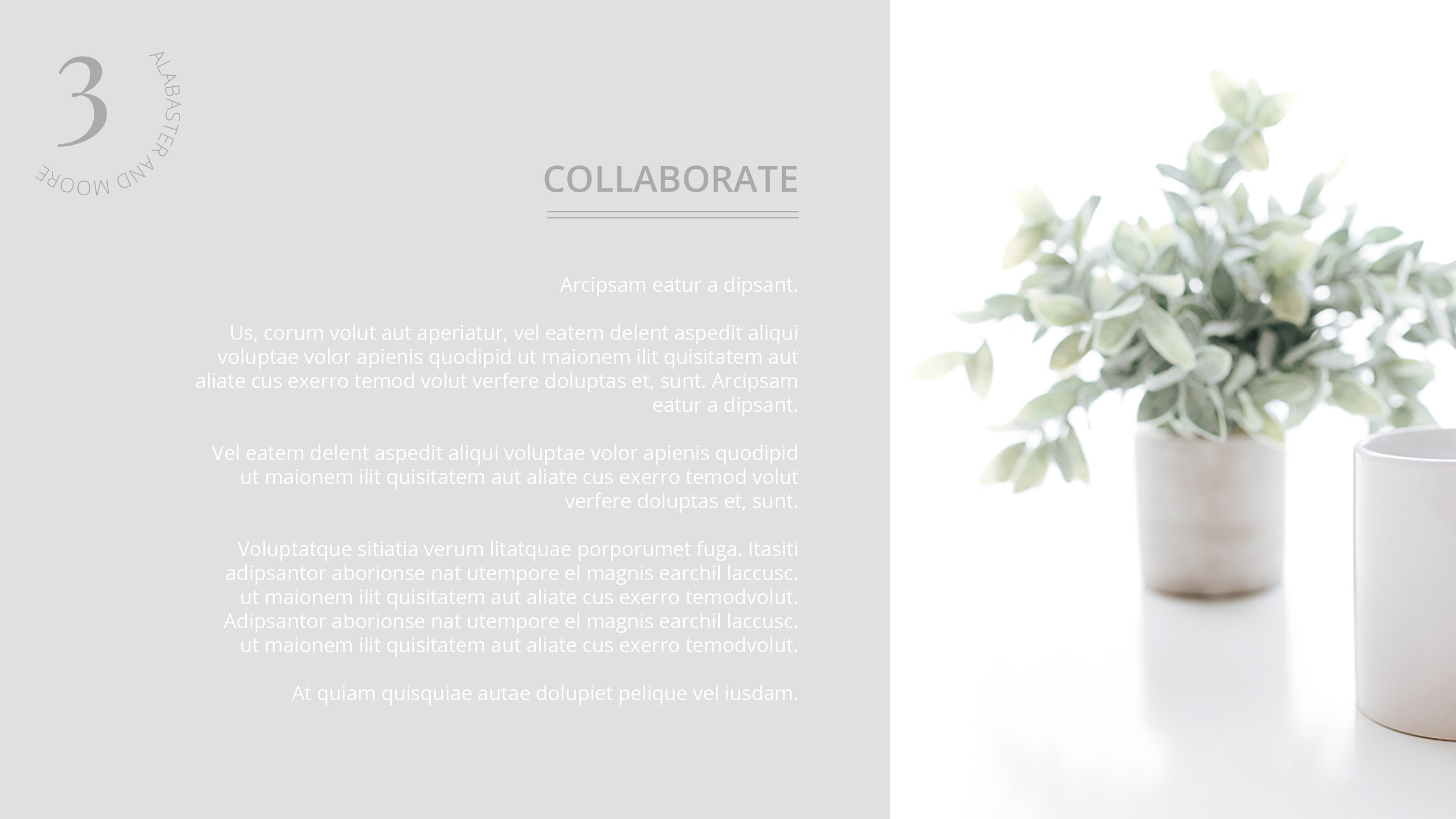 Alabaster and Moore Media Kit | Collaborate