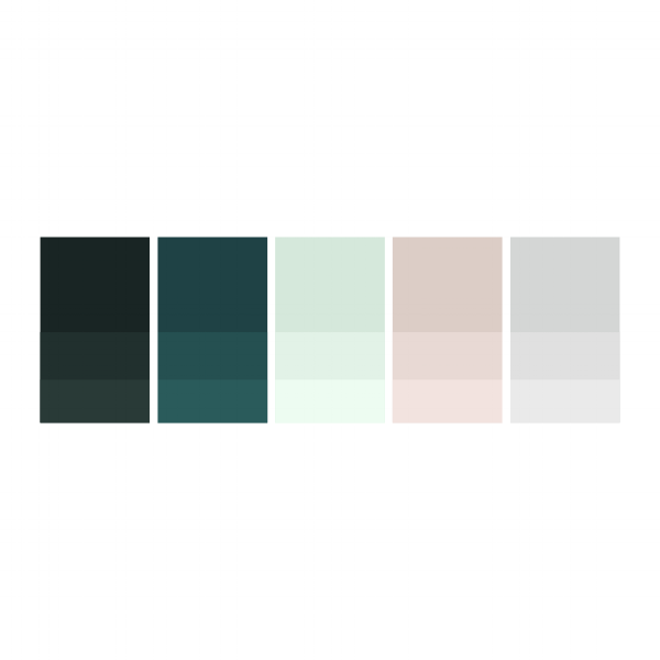 Forest: #11201e  |  Teal: #154042  |  Mint: #d5e9dd  |  Pink: #decec8  |  Cloud: #d4d6d5