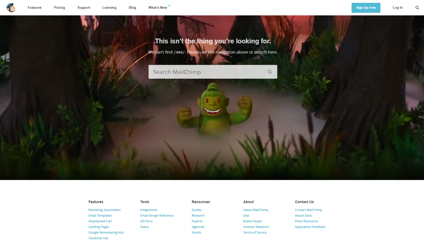 How to Make the Most of Your 404 Error Page in Squarespace | Mailchimp