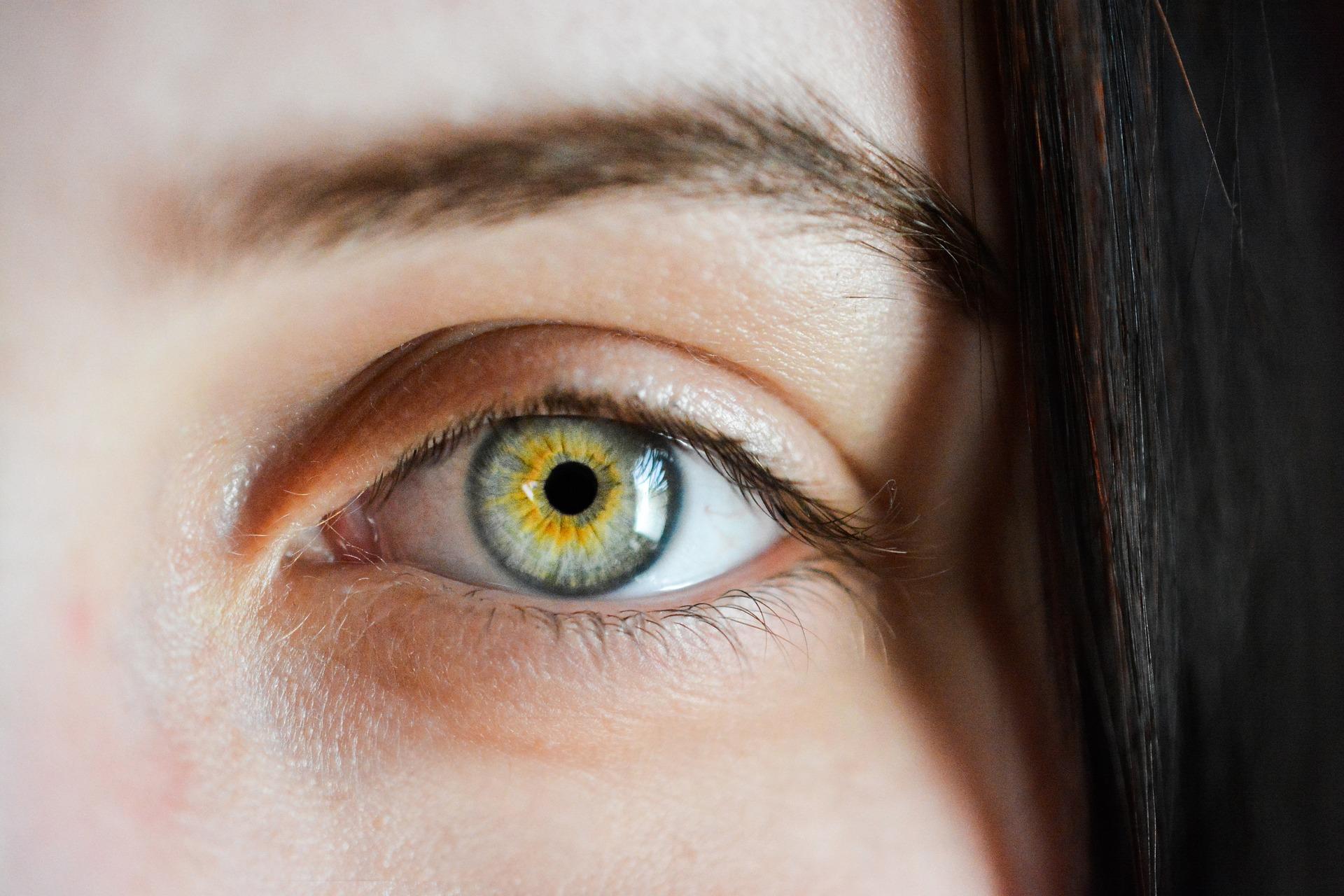 eye-2340806_1920.jpg