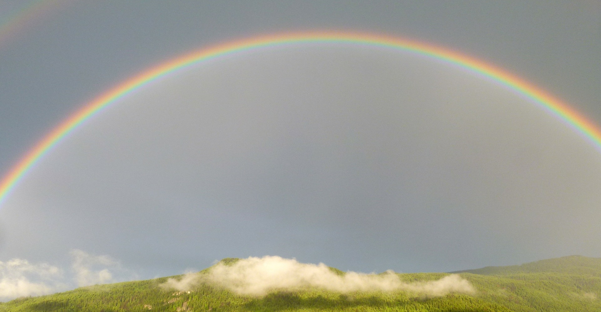 Rainbows are nice. People should be something more.