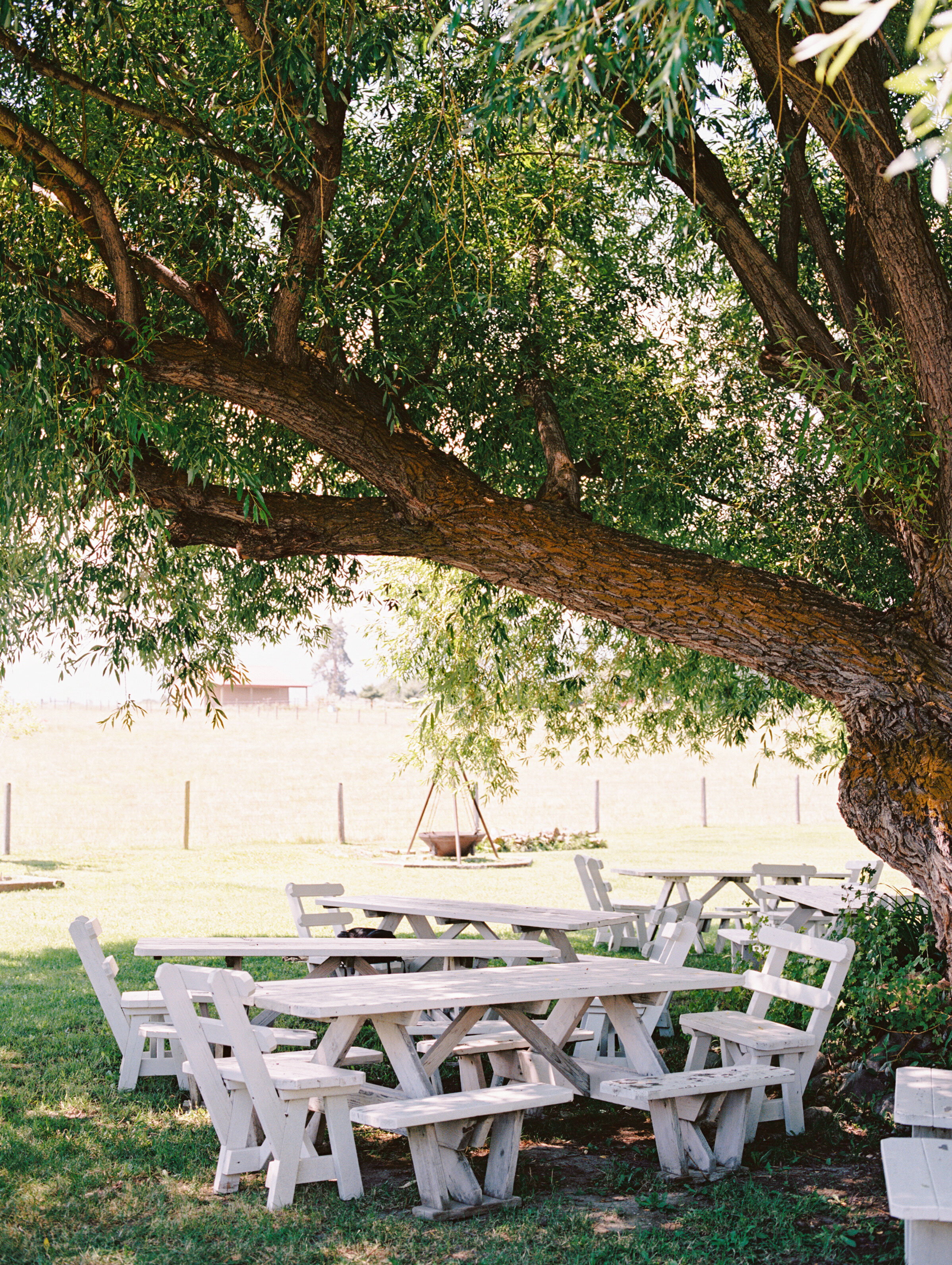 Willow Hall can seat approximately 50 people. Perfect for holidays, anniversaries, birthday party, or baby shower.