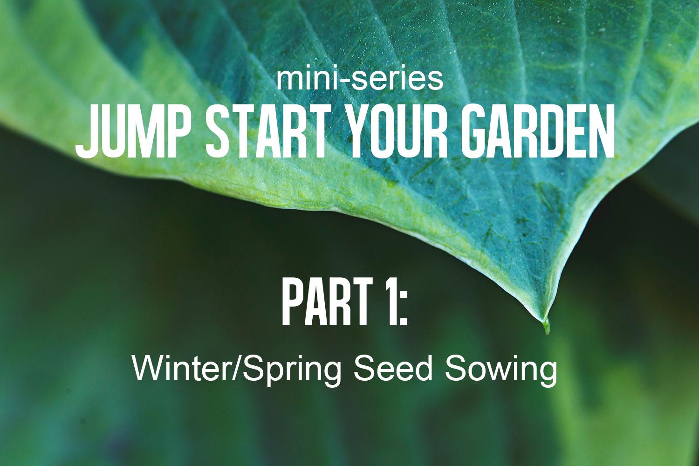 Winter-Seed-Sowing-(8).jpg