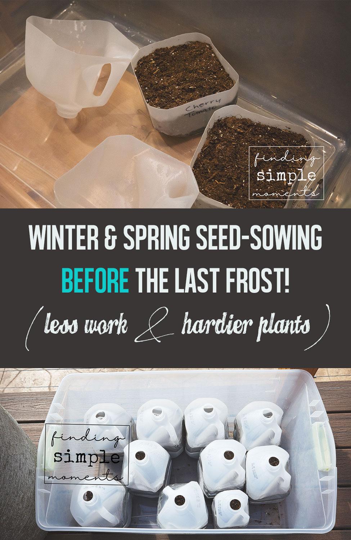 Winter-Seed-Sowing-2.jpg
