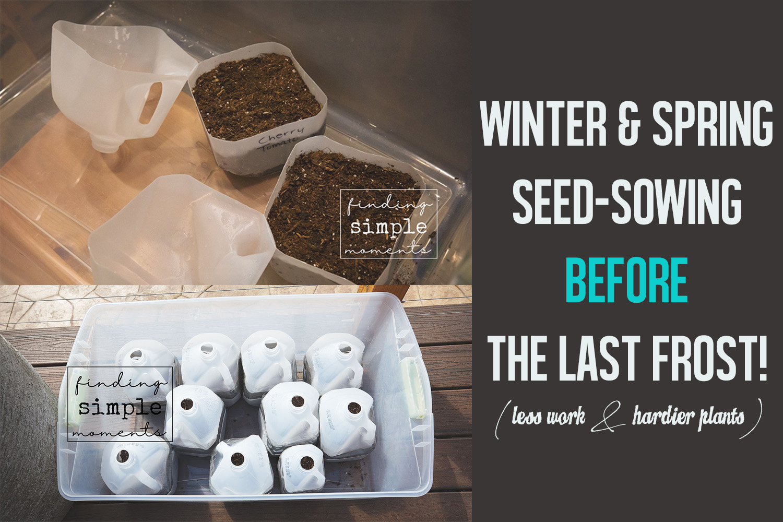 Winter-Seed-Sowing-1.jpg