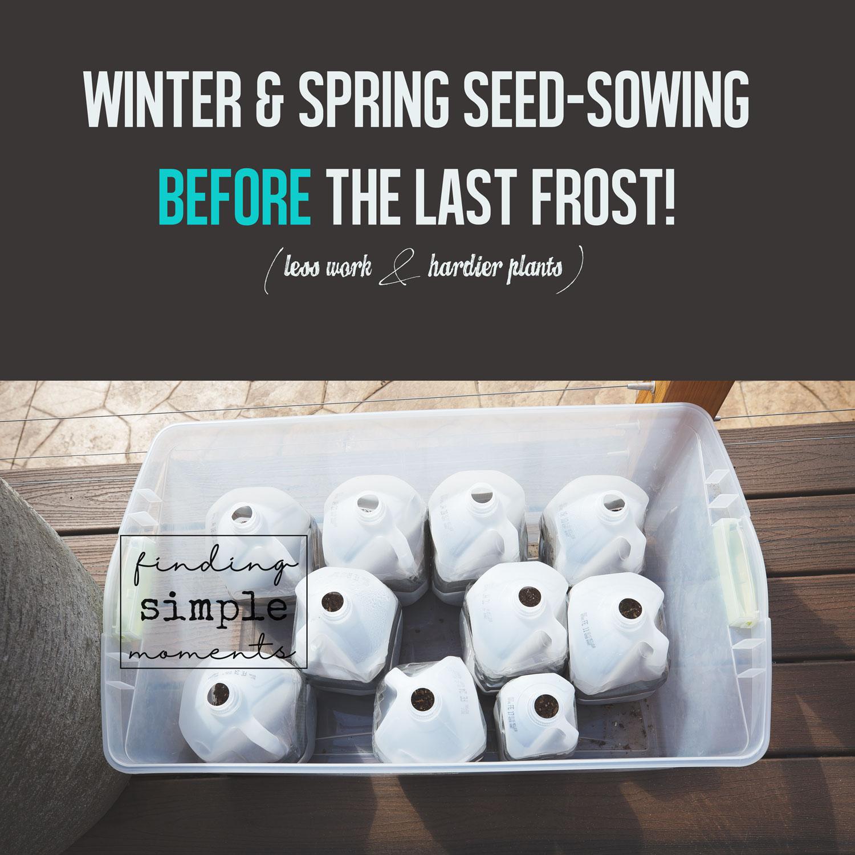 Winter-Seed-Sowing-(9).jpg