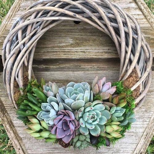 Succulent Wreath inspiration form  Women's Day Magazine