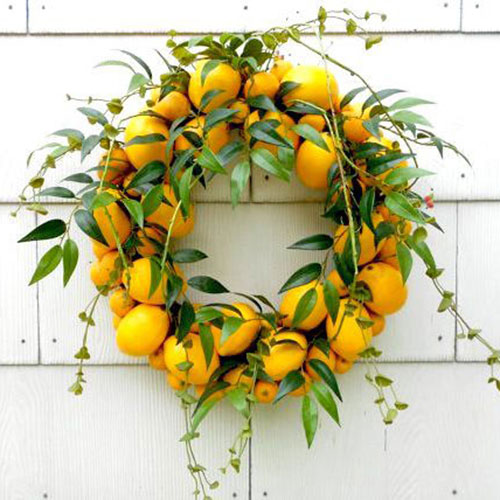Summer Fruit Wreath available for purchase from  DeLaFleur