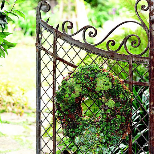Living Wreath tutorial from  Better Homes and Gardens
