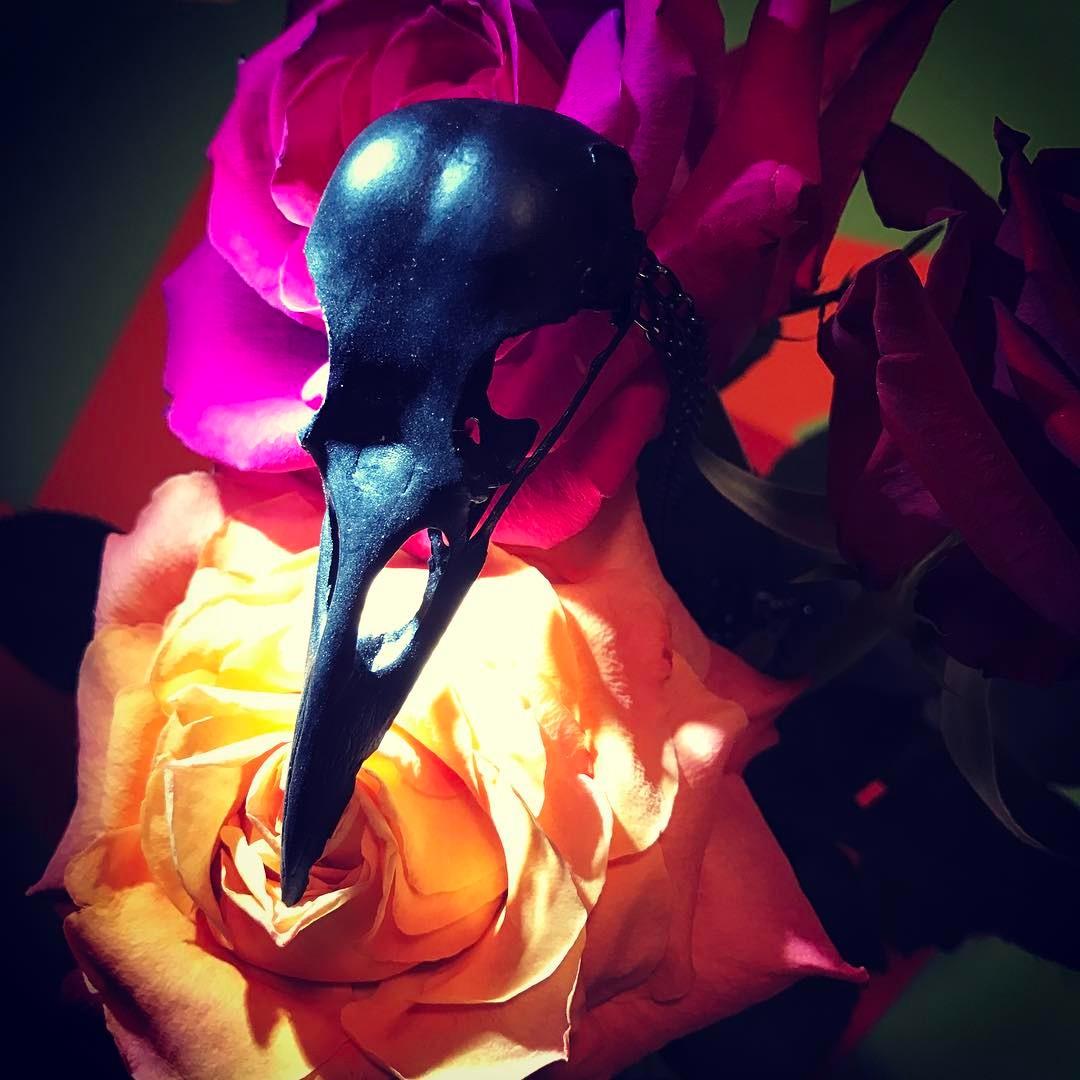 black crow skull2.jpg