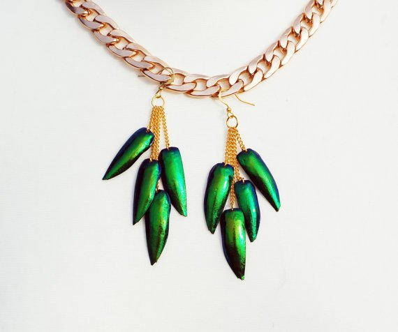 jewel beetle wing earrings.jpg