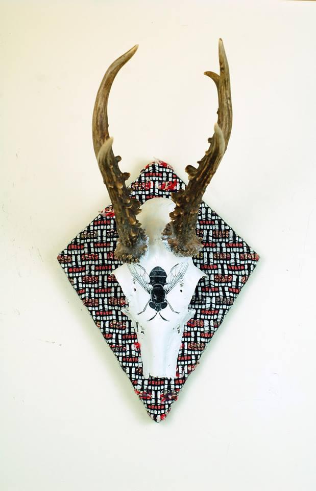 Fly Photo Transfer Roe Deer Skull Plaque.jpg
