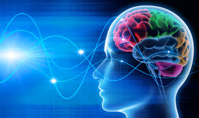 brain health 2.jpg