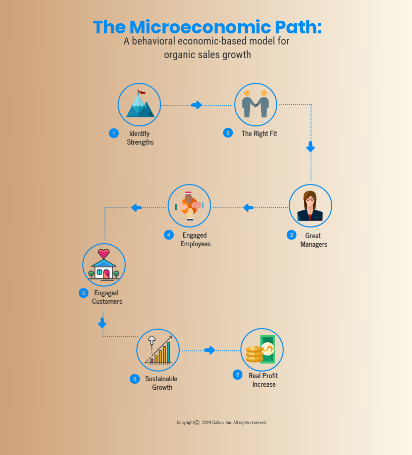 The Microeconomic Path.png