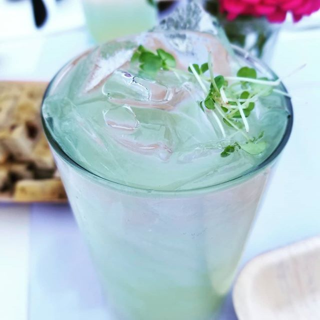 Had an amazing time at Nashua's Downtown Dinner! We were featured in the only cocktail of the night: Lemon Basil Breese presented  by @stellablunh! Support your local farmers! . . . . . #urbanfarmer #downtownnashua #lemonbasil #microgreens #farmer #newhampshire