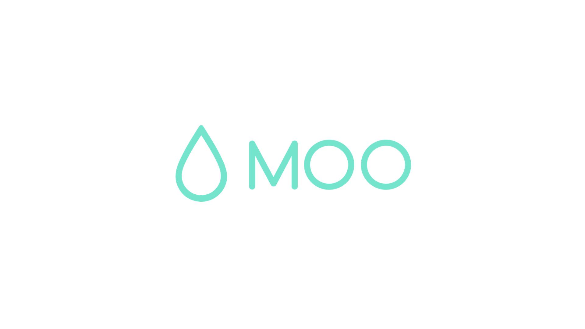MOO+PROCESSBOOK.002.jpeg