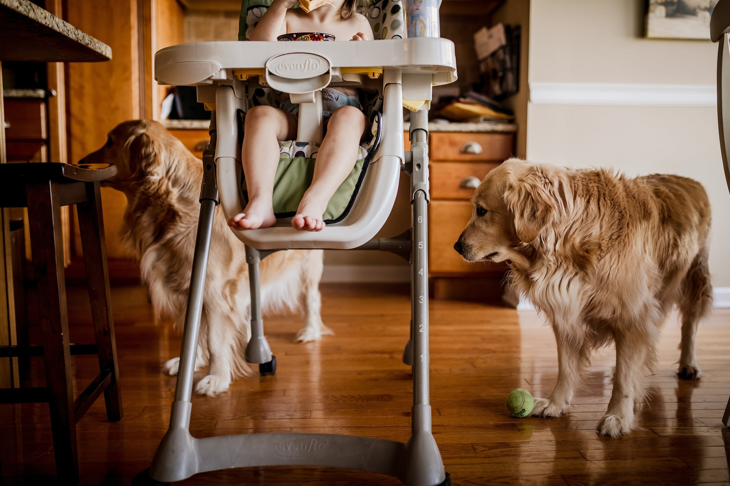 Lehigh-Valley-Documentary-Family-Photographer_0007.jpg