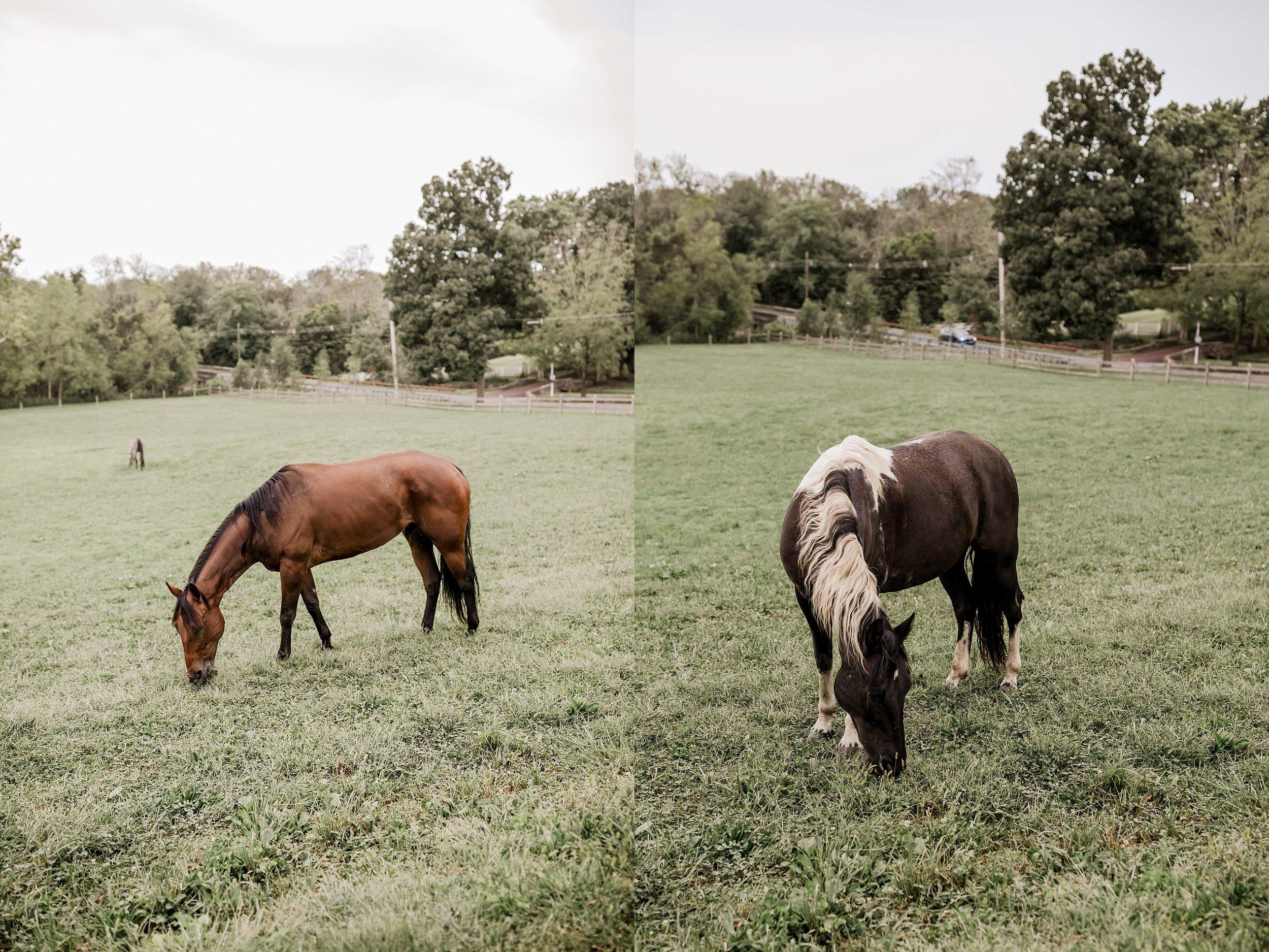 Durham-Hill-Farm-Wedding-Photographer_0098.jpg
