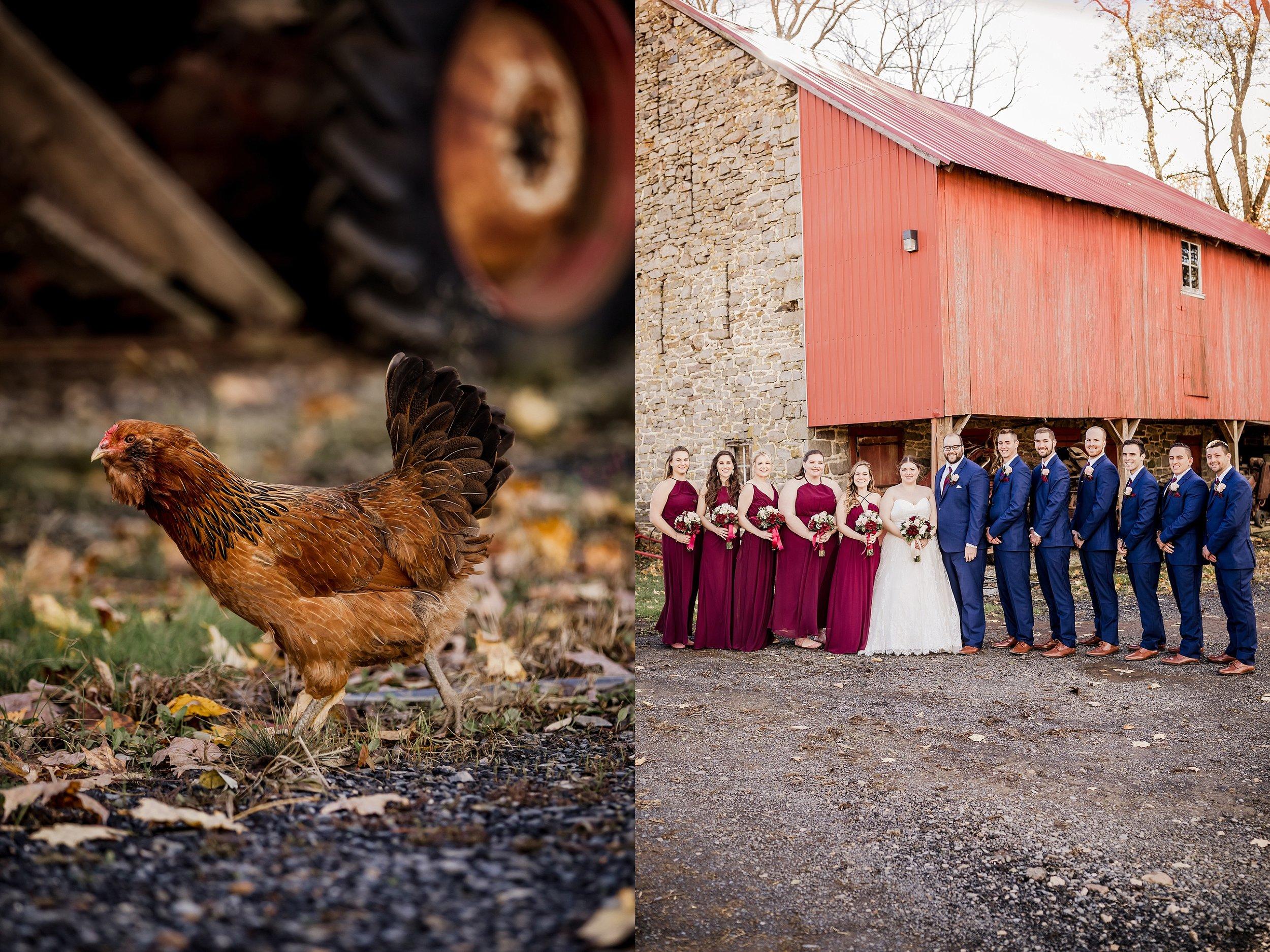 Savidge-Farms-Wedding-Photographer_0042.jpg