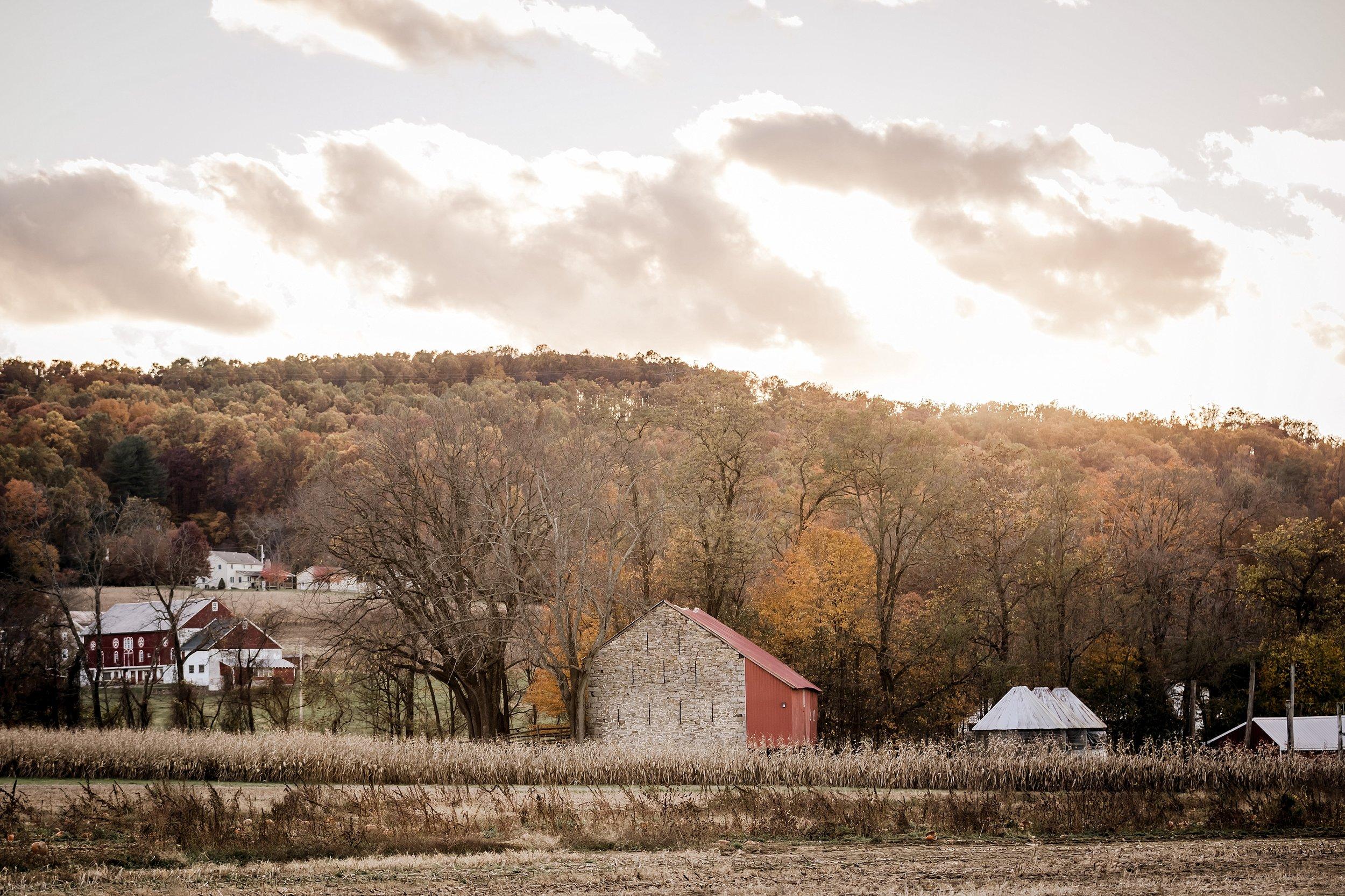 Savidge-Farms-Wedding-Photographer_0110.jpg