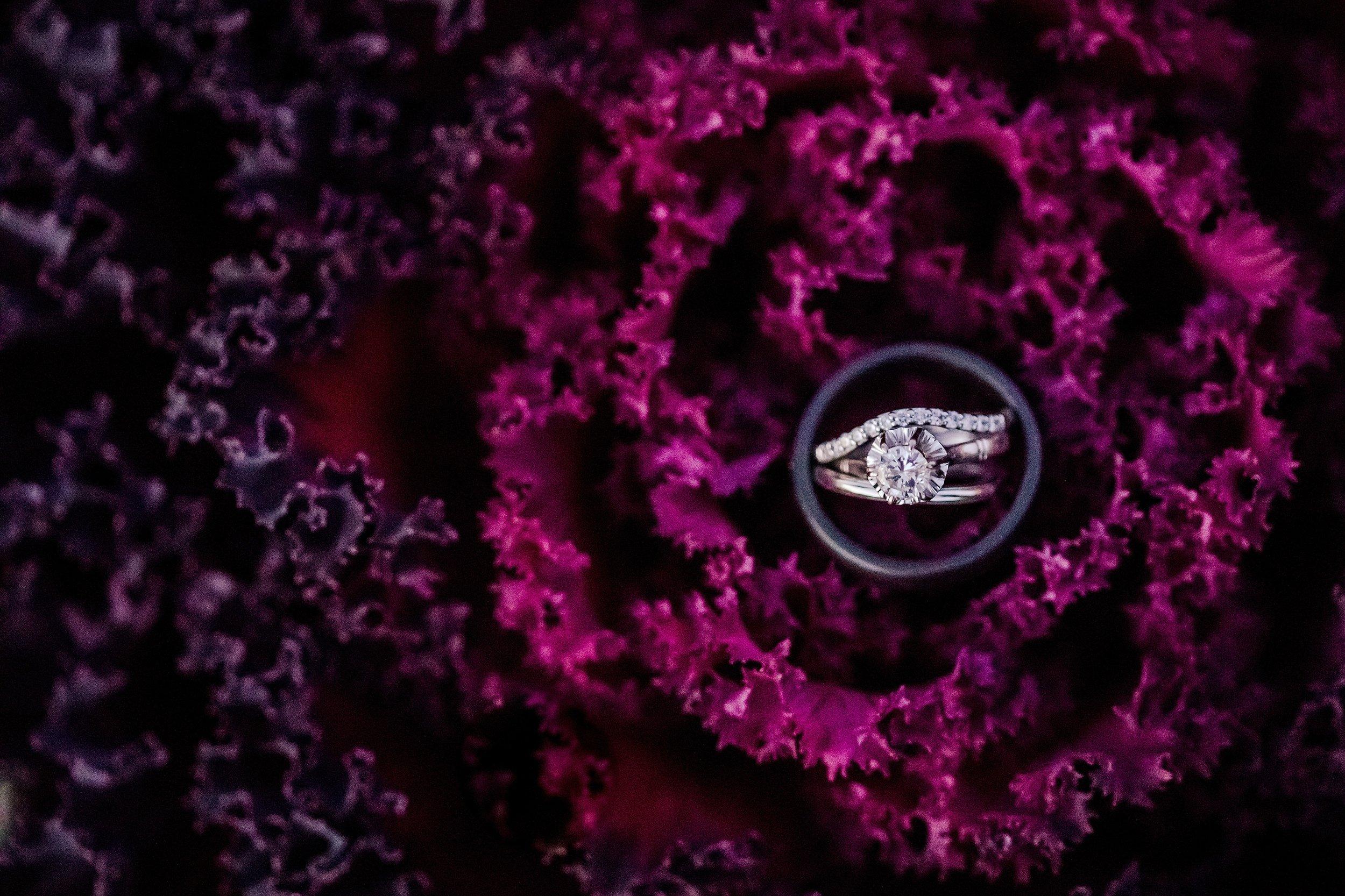 Savidge-Farms-Wedding-Photographer_0115.jpg