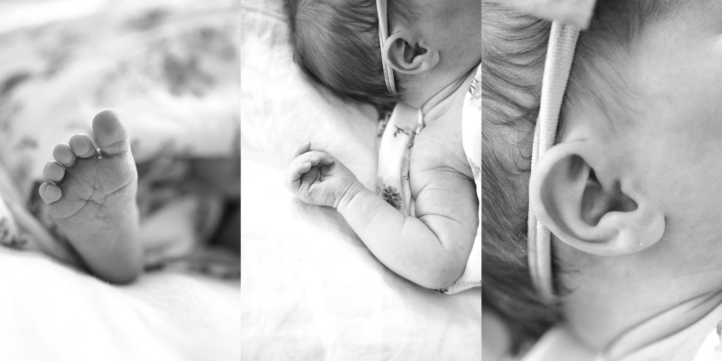 Lehigh-Valley-Newborn-Photographer_0005.jpg