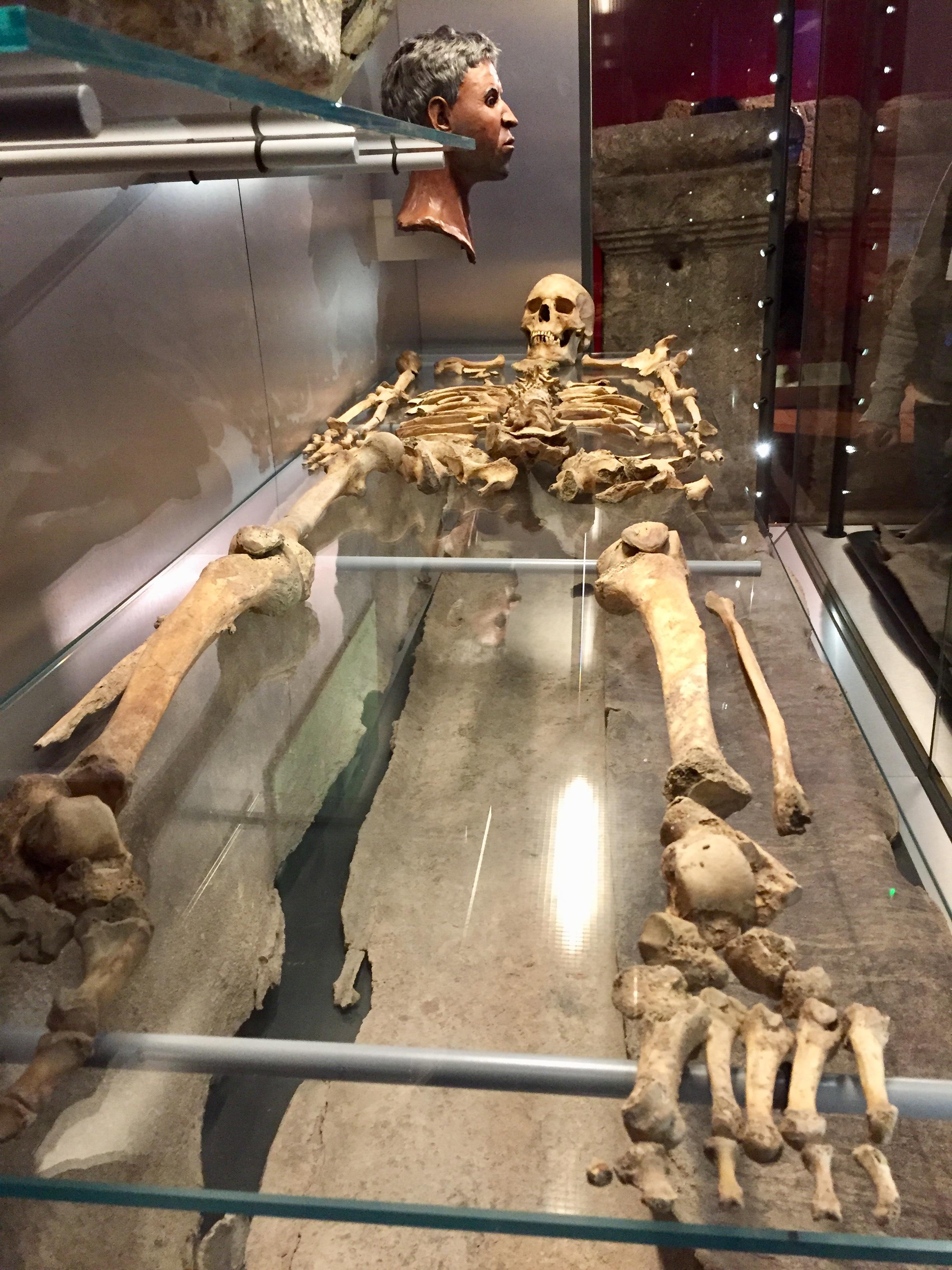 The skeleton of an old Roman man