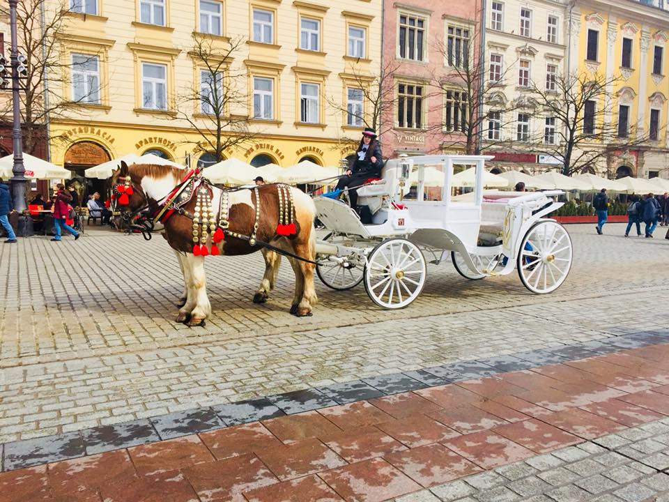 Horse drawn carriage in the main square