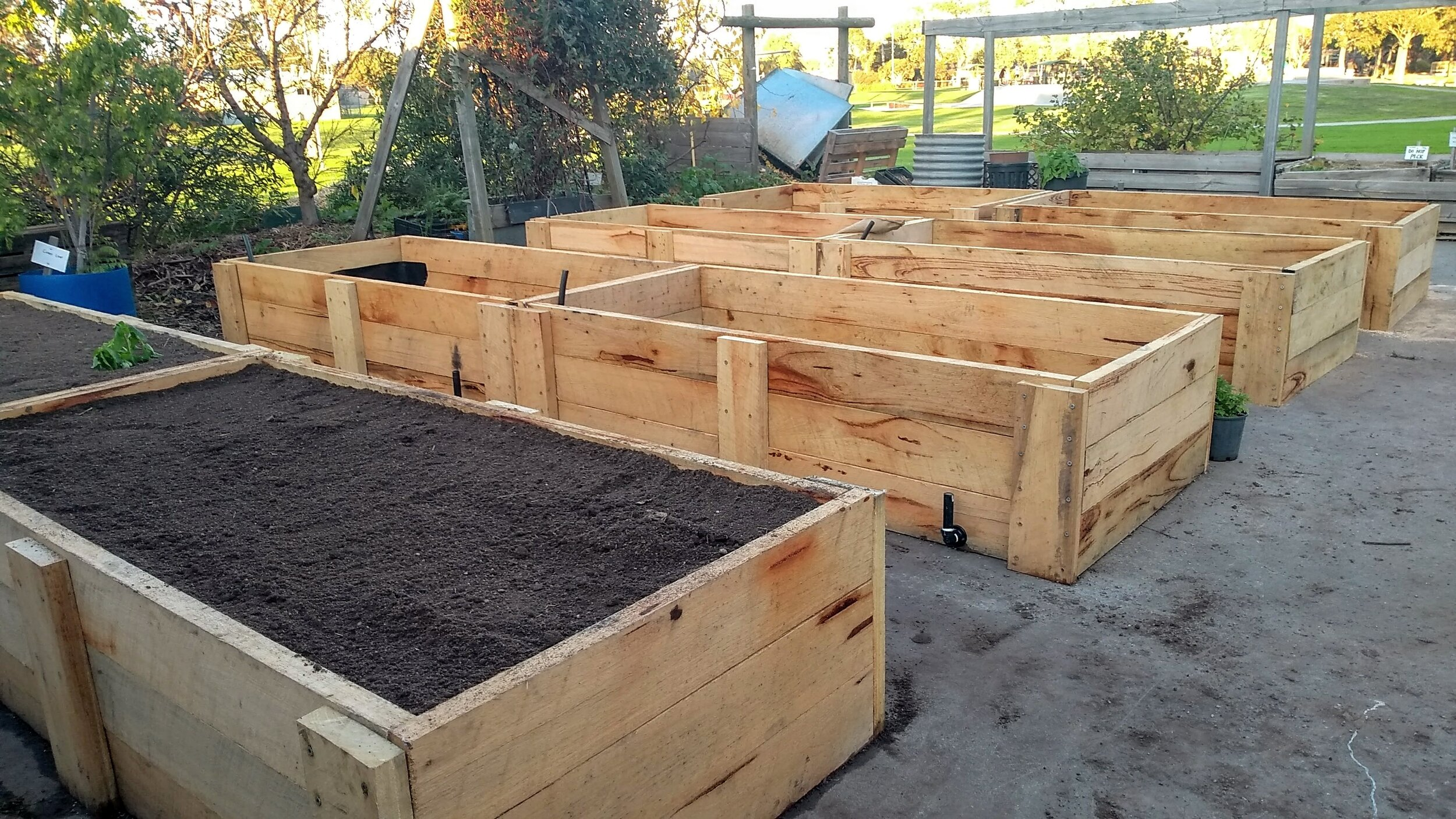 PCG new Wicking beds.jpg