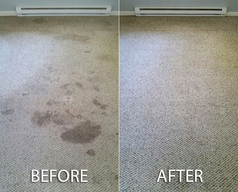 Carpet-cleaning-ripon.jpg