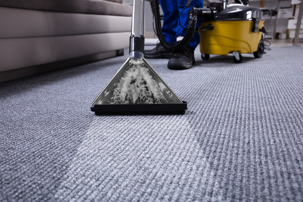 Carpet/ RugDeep Cleaning -