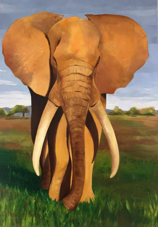 The Elephant, inspired by a photo taken by Mark Miller