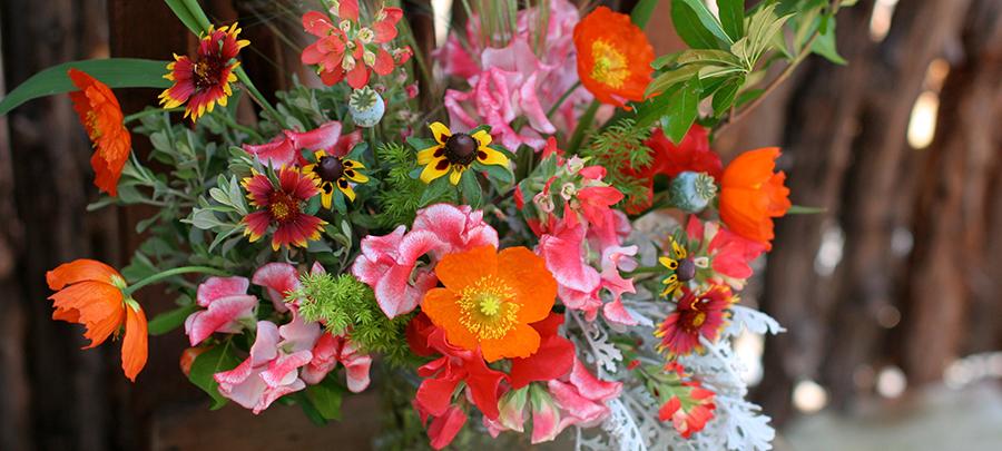 Austin-florist-quick-local-deliveries-flowers