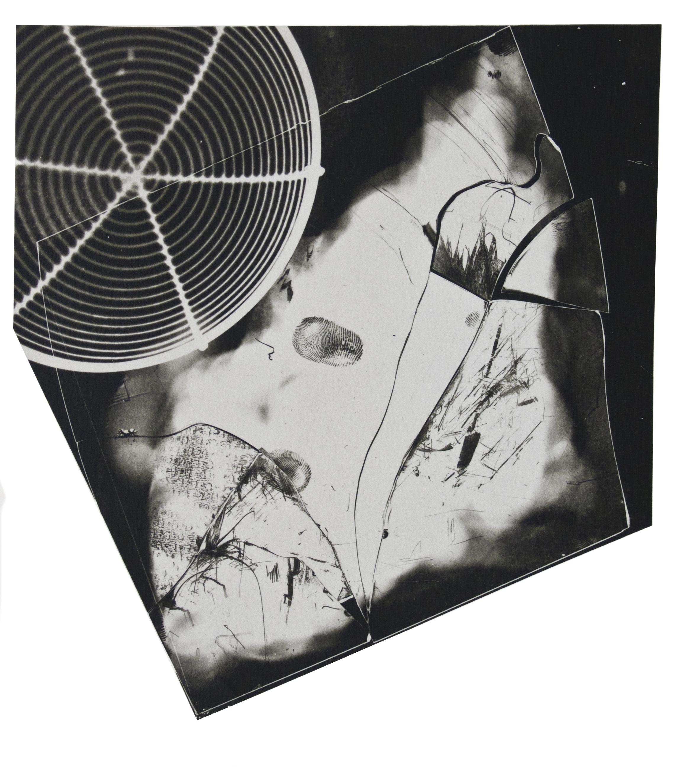 Fotogramm/Cliché verre