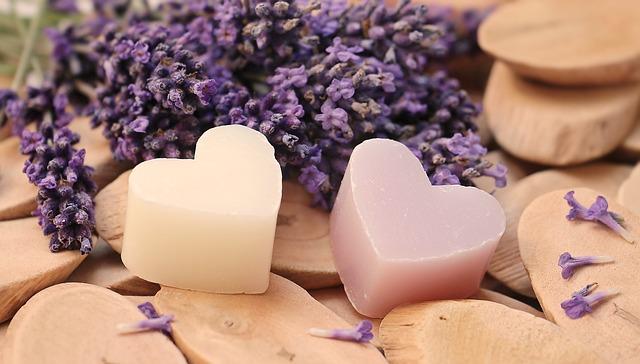 lavender-2443210_640.jpg