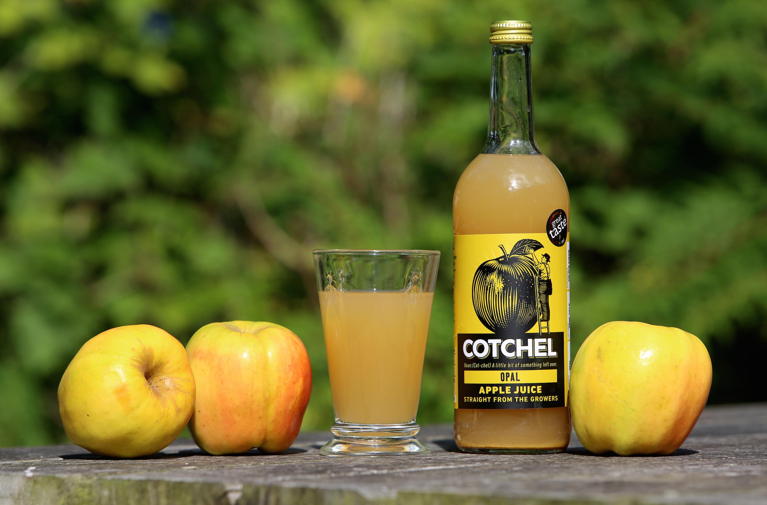 Cotchel Opal Juice.jpg