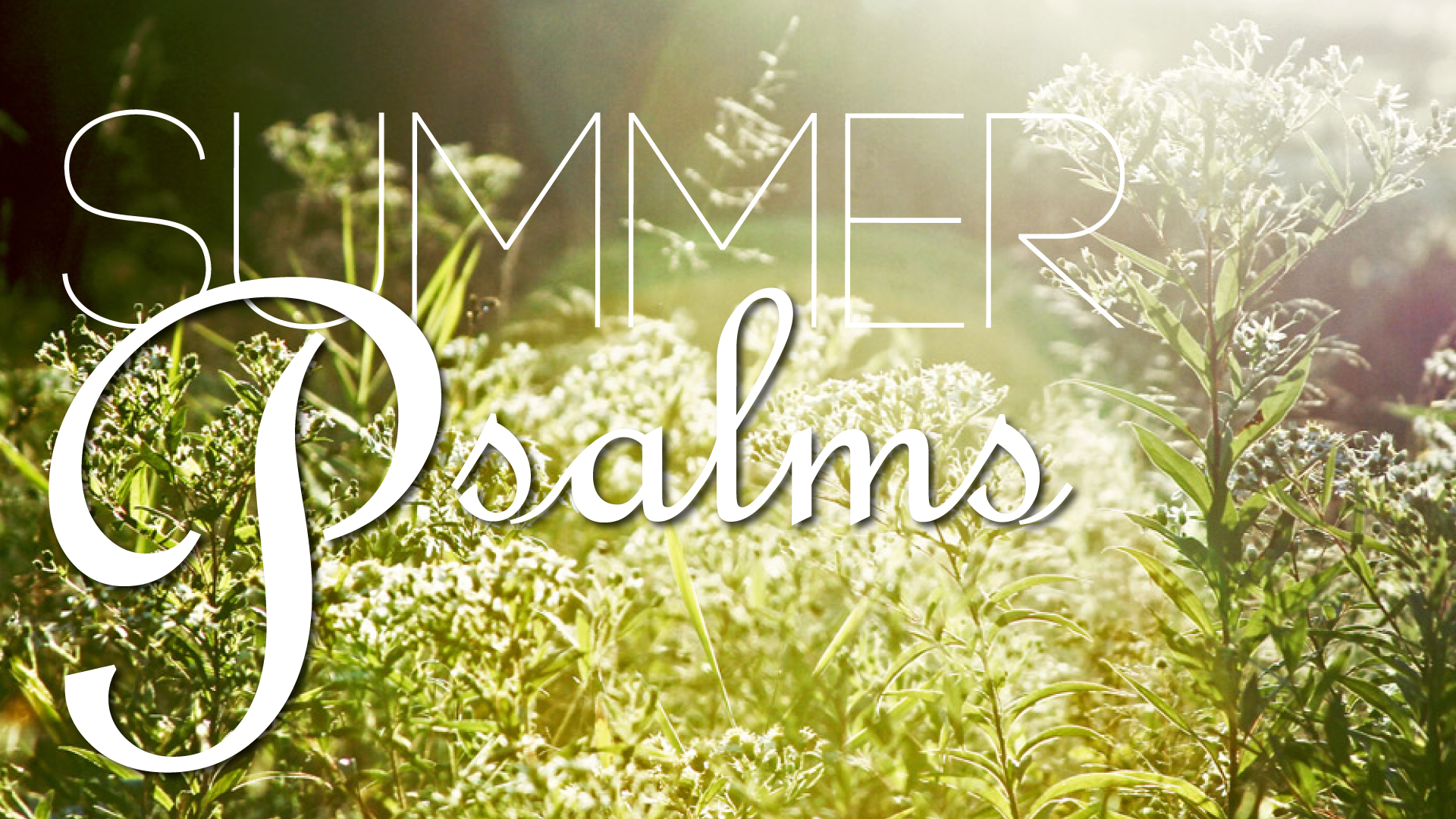 Summer-Psalms.jpg