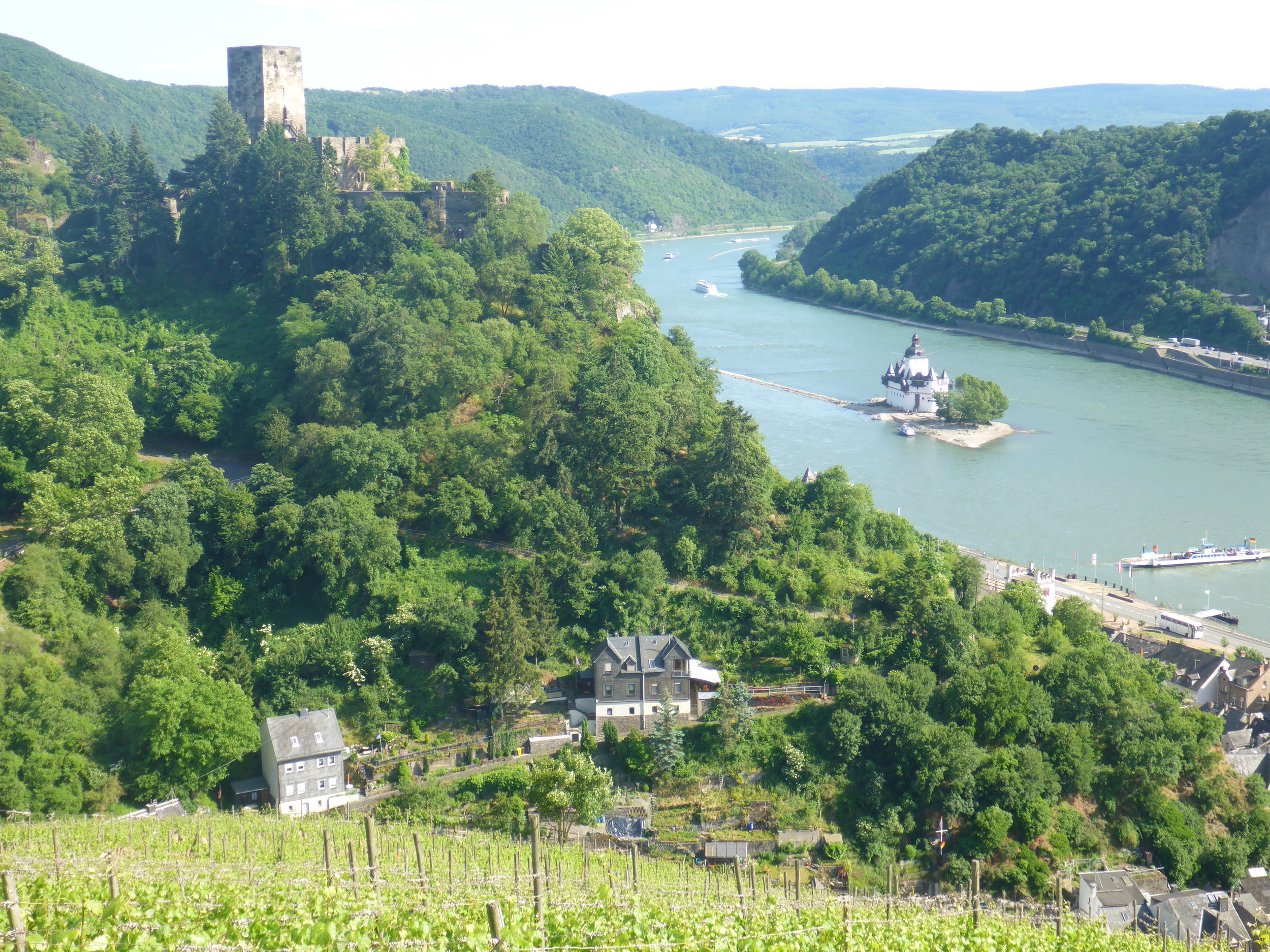 Rheinsteig_Rheinblick.JPG