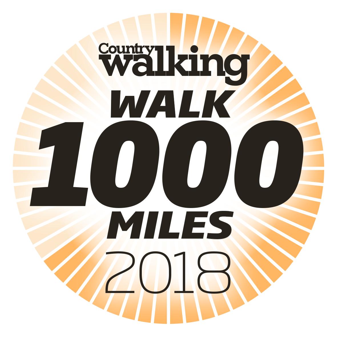 Walk 1000miles 2018 logo less segs.png